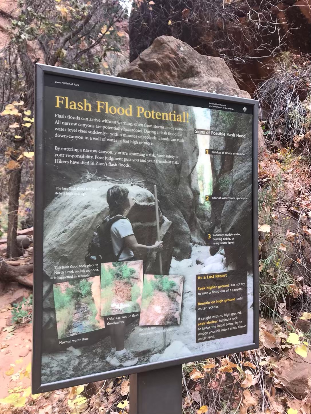flash flood zion narrows
