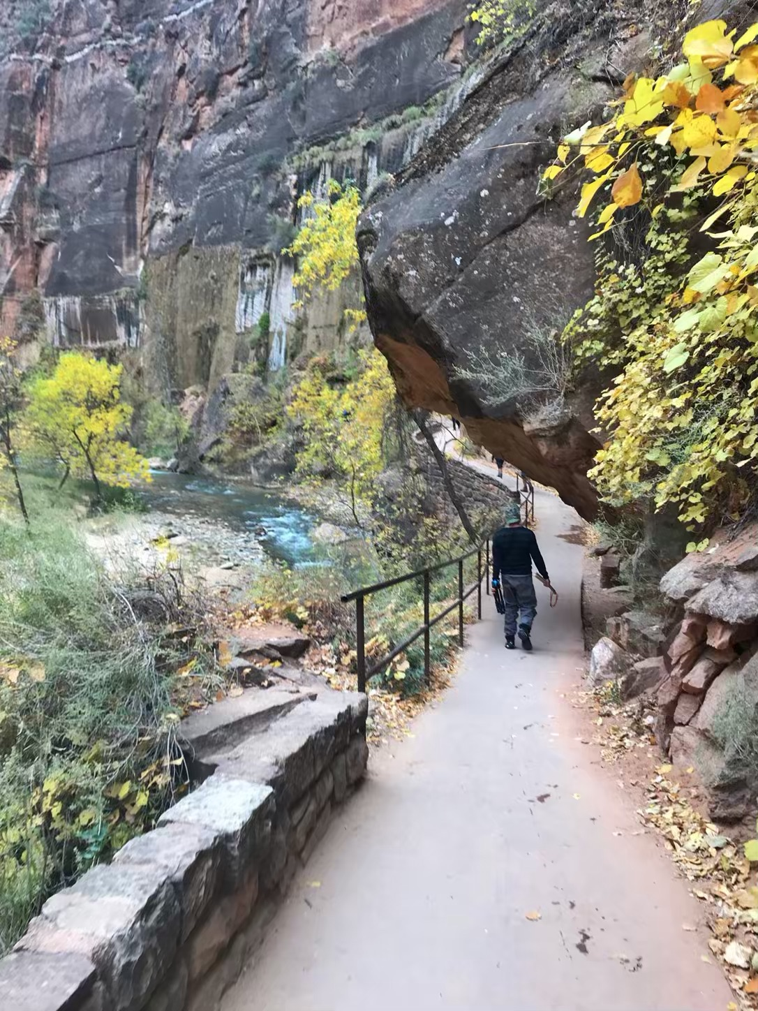 zion narrows start
