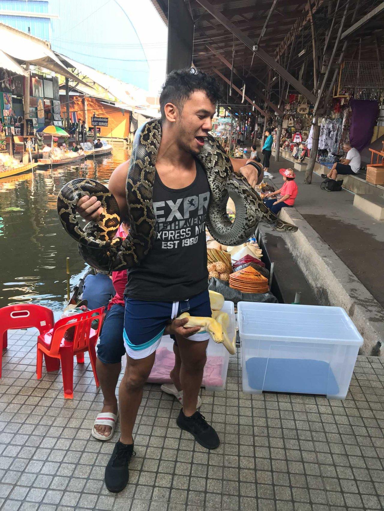 snake in thailand