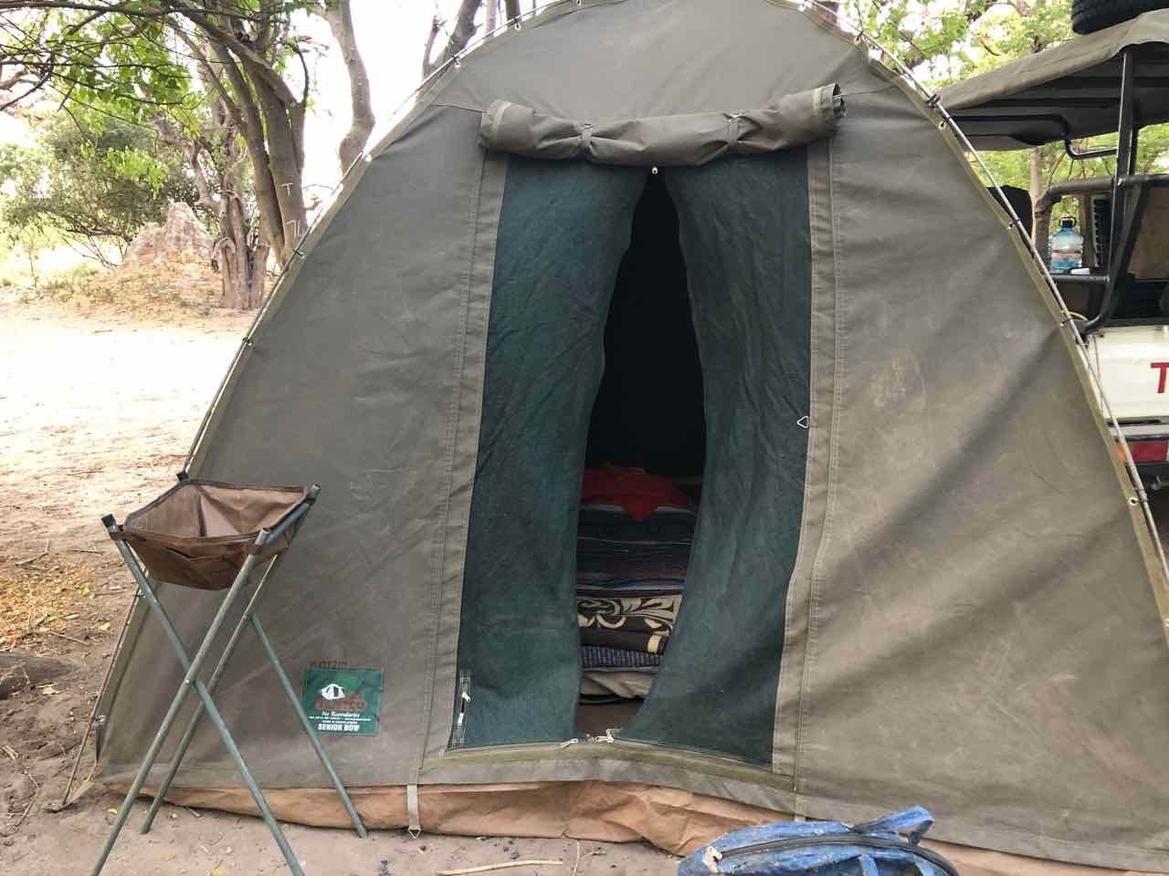 camping safari moremi